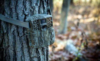 Meldepflicht für Wildkameras?